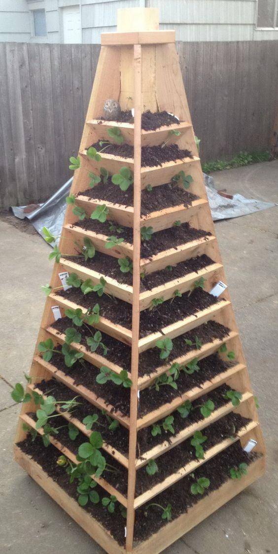 Zahrada - inspirace - na jahody