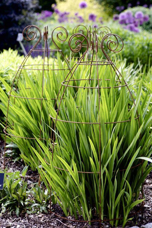 Zahrada - inspirace - Obrázek č. 200