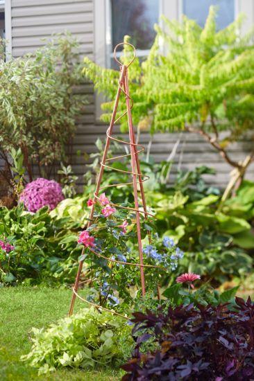 Zahrada - inspirace - Obrázek č. 182