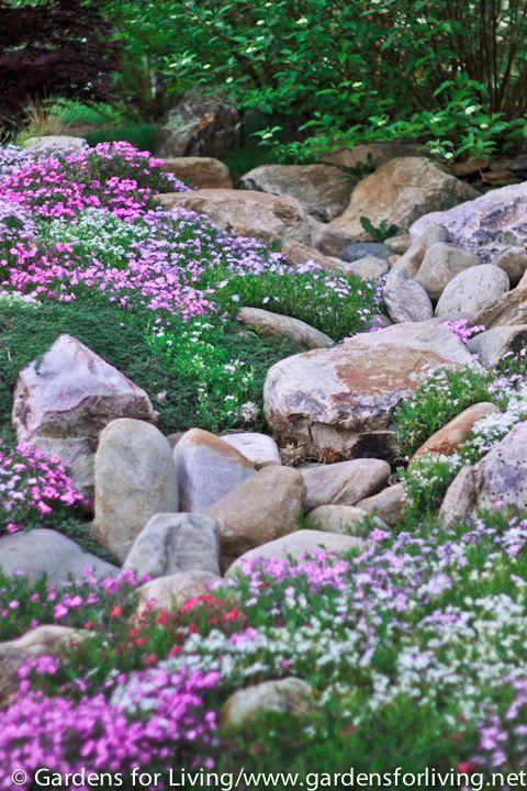Zahrada - inspirace - Obrázek č. 124