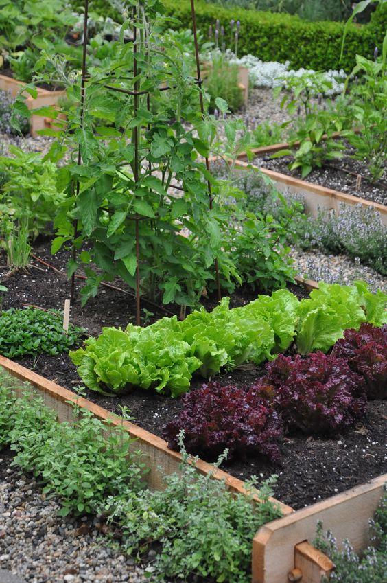 Zahrada - inspirace - Obrázek č. 148