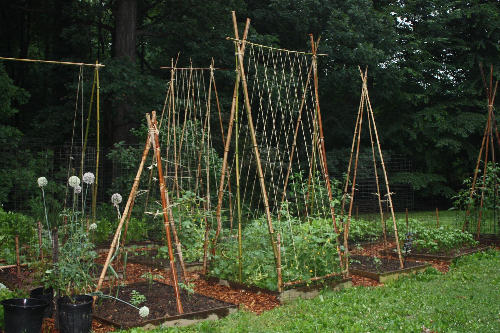 Zahrada - inspirace - Obrázek č. 186