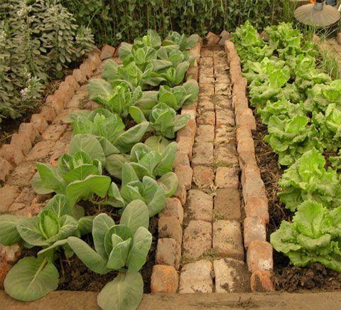 Zahrada - inspirace - Obrázek č. 151