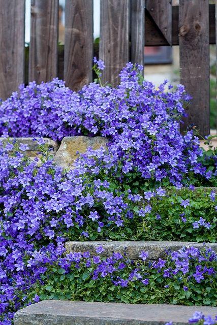 Zahrada - inspirace - podle originálu by toto měl být zvonek