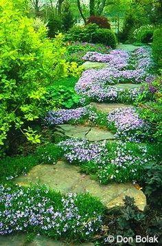 Zahrada - inspirace - Obrázek č. 14