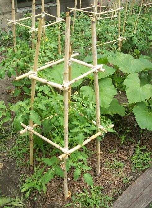 Zahrada - inspirace - Obrázek č. 187