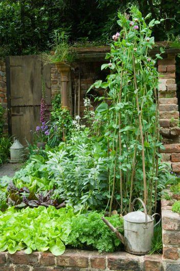 Zahrada - inspirace - Obrázek č. 190