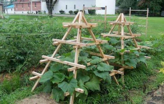 Zahrada - inspirace - Obrázek č. 144
