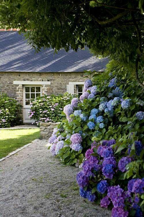 Zahrada - inspirace - Obrázek č. 171