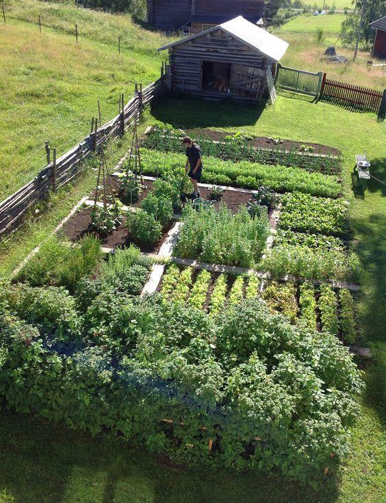Zahrada - inspirace - Obrázek č. 155