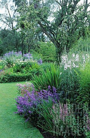 Zahrada - inspirace - Obrázek č. 47