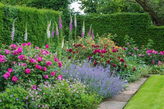 Zahrada - inspirace - nejnižší patro kakost a šanta, střední část ovládly růže, vzadu různé odstíny fialové - náprstník ... a jiné :-)