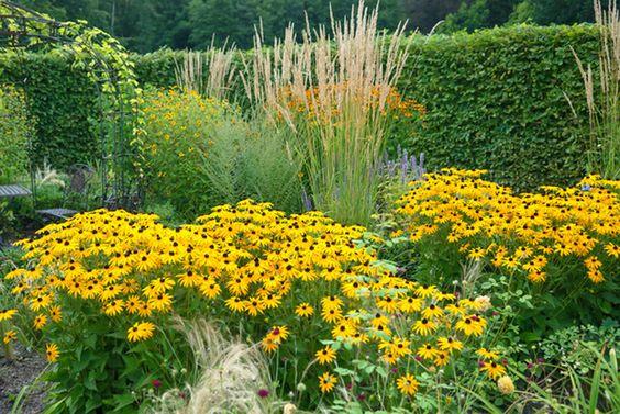 Zahrada - inspirace - Obrázek č. 81