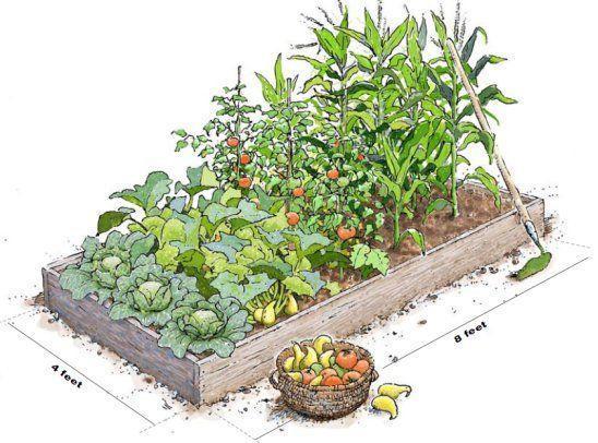 Zahrada - inspirace - Obrázek č. 147