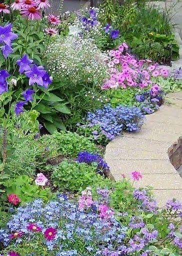 Zahrada - inspirace - co vím - fialová vysoká kytka echinacea, pod ní modrý boubelík, dole světle modré nízké lobelky (letnička), bílé drobné tipuju na šater (nevěstin závoj), dole vlevo kopretina šarlatová