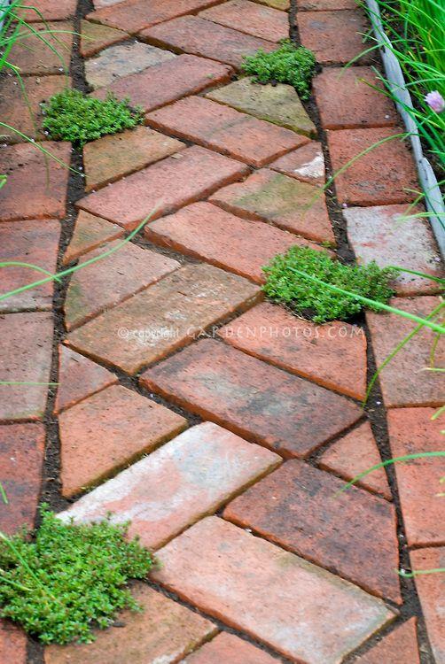 Zahrada - inspirace - Obrázek č. 153