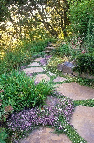 Zahrada - inspirace - Obrázek č. 17