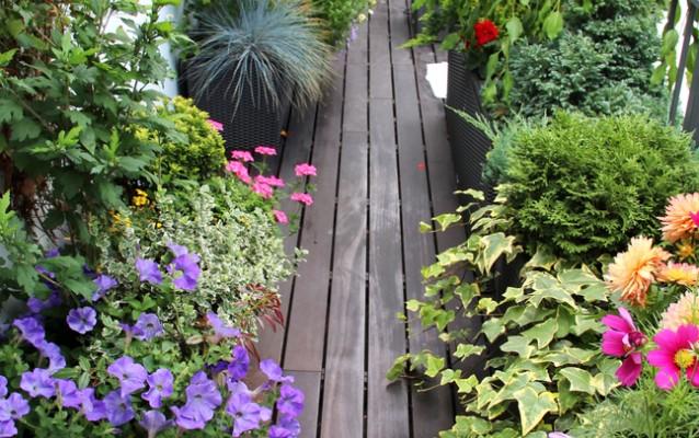 Zahrada - inspirace - i balkon může být plný kytek :-)
