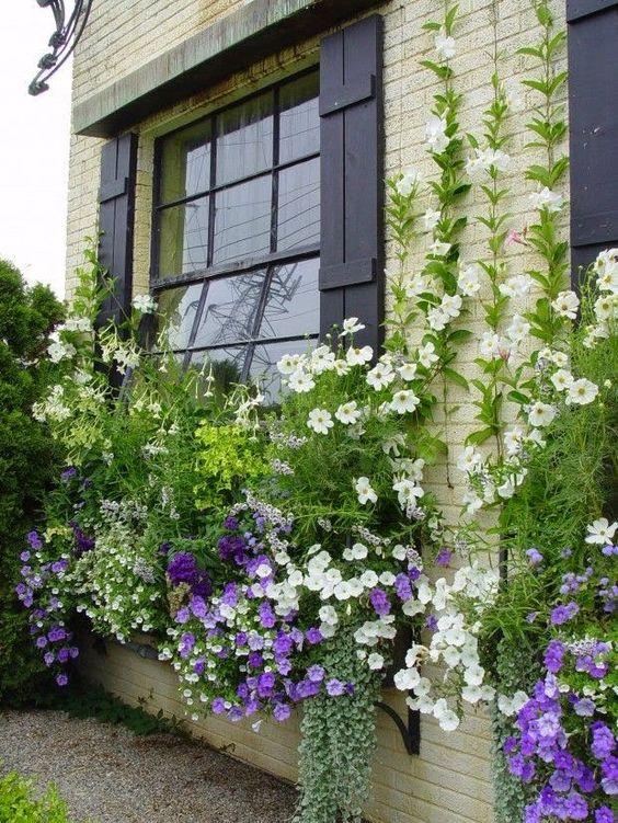 Zahrada - inspirace - Obrázek č. 113
