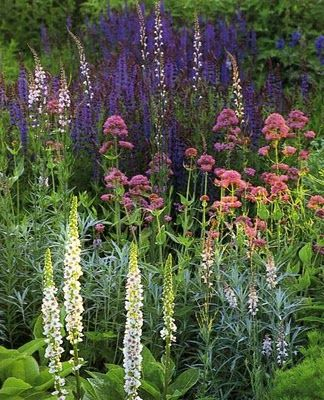 Zahrada - inspirace - Obrázek č. 90