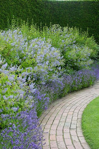 Zahrada - inspirace - Obrázek č. 24