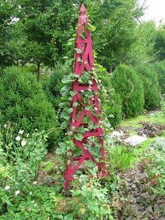 Zahrada - inspirace - Obrázek č. 193