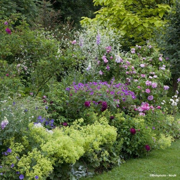 Zahrada - inspirace - kontryhel, kakosty, pivoňky, růže a jiné :-)
