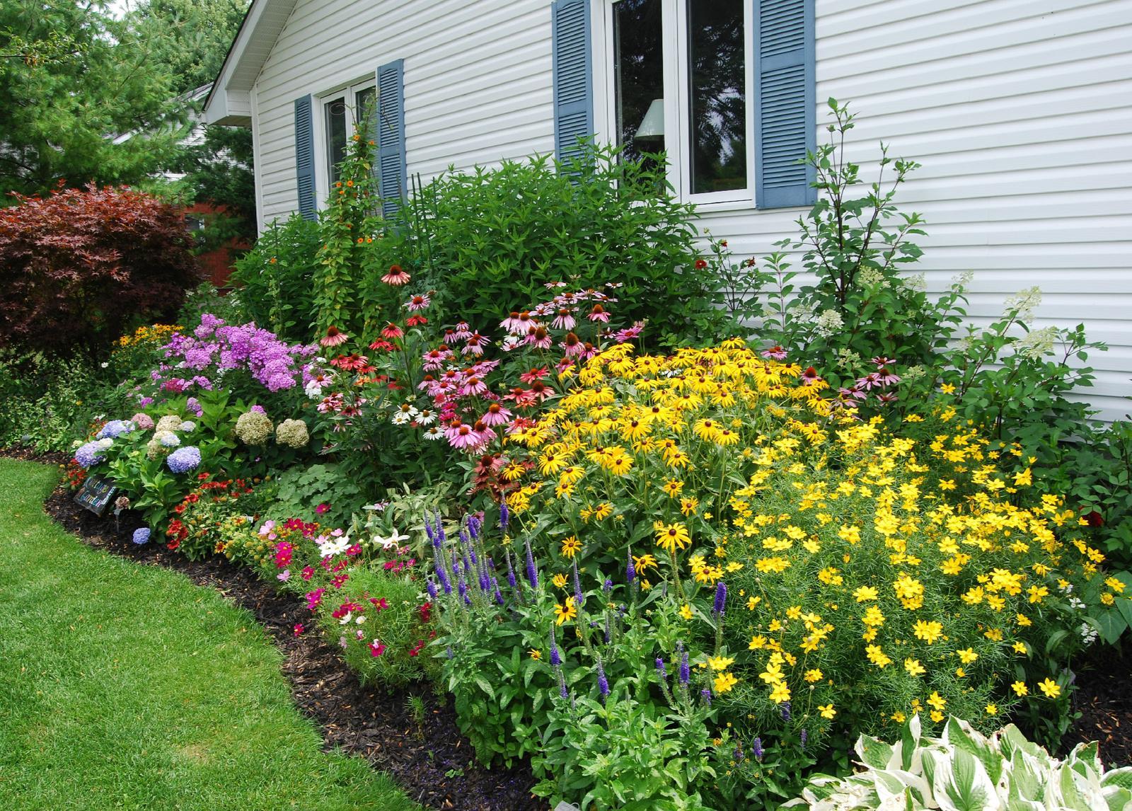Zahrada - inspirace - zprava - bohyška, rozrazil, krásnoočko přeslenité, rudbekia, echinacea, dole pak pravděpodobně krásnoočko, dále ostálky, vzadu hortenzie a nejspíš vysoké floxy