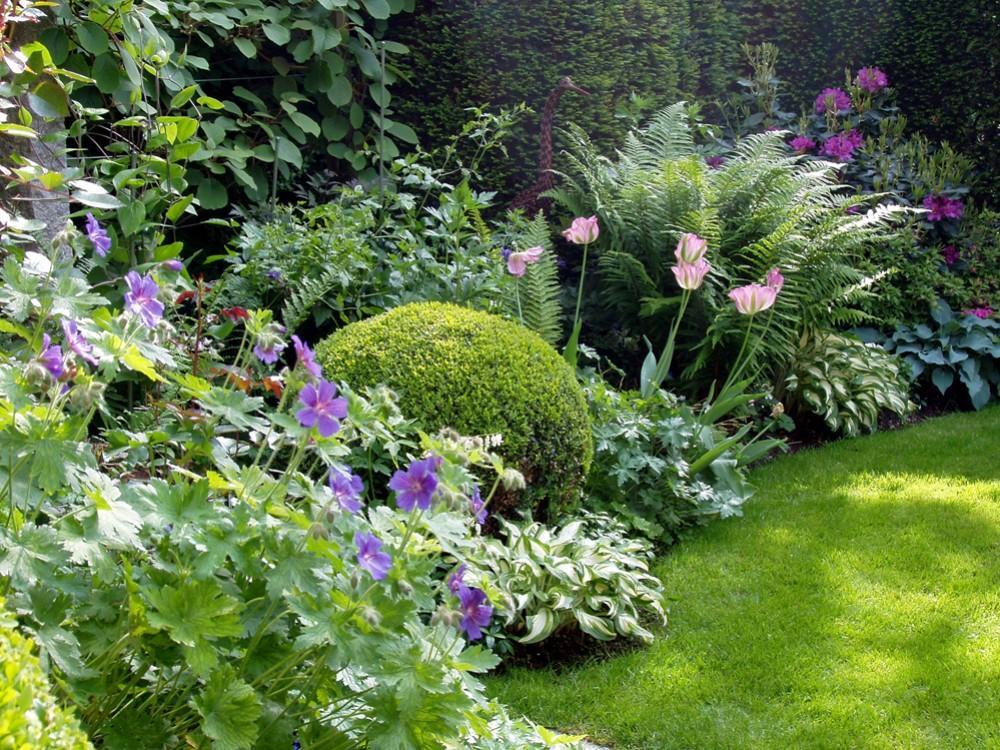 Zahrada - inspirace - kakosty, bohyšky, odkvétající tulipány, kapradiny