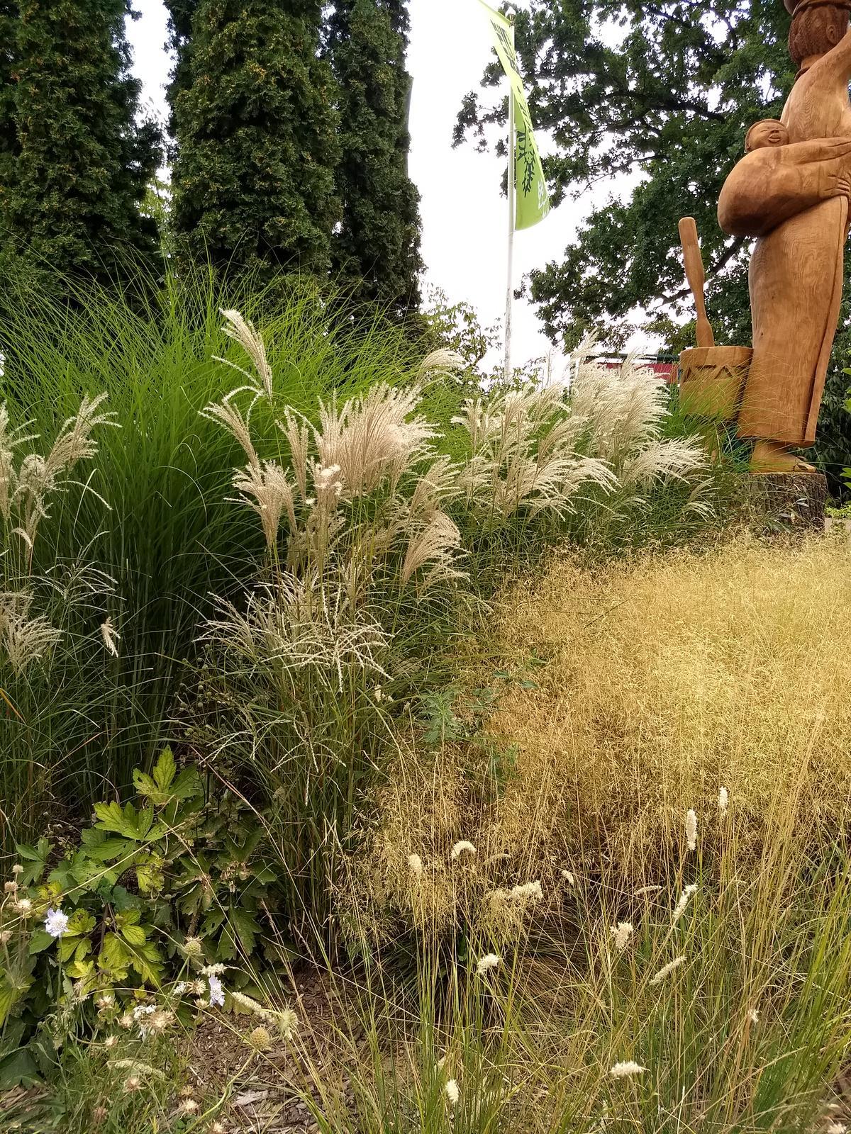 Zahrada - inspirace - ZOO Lešná
