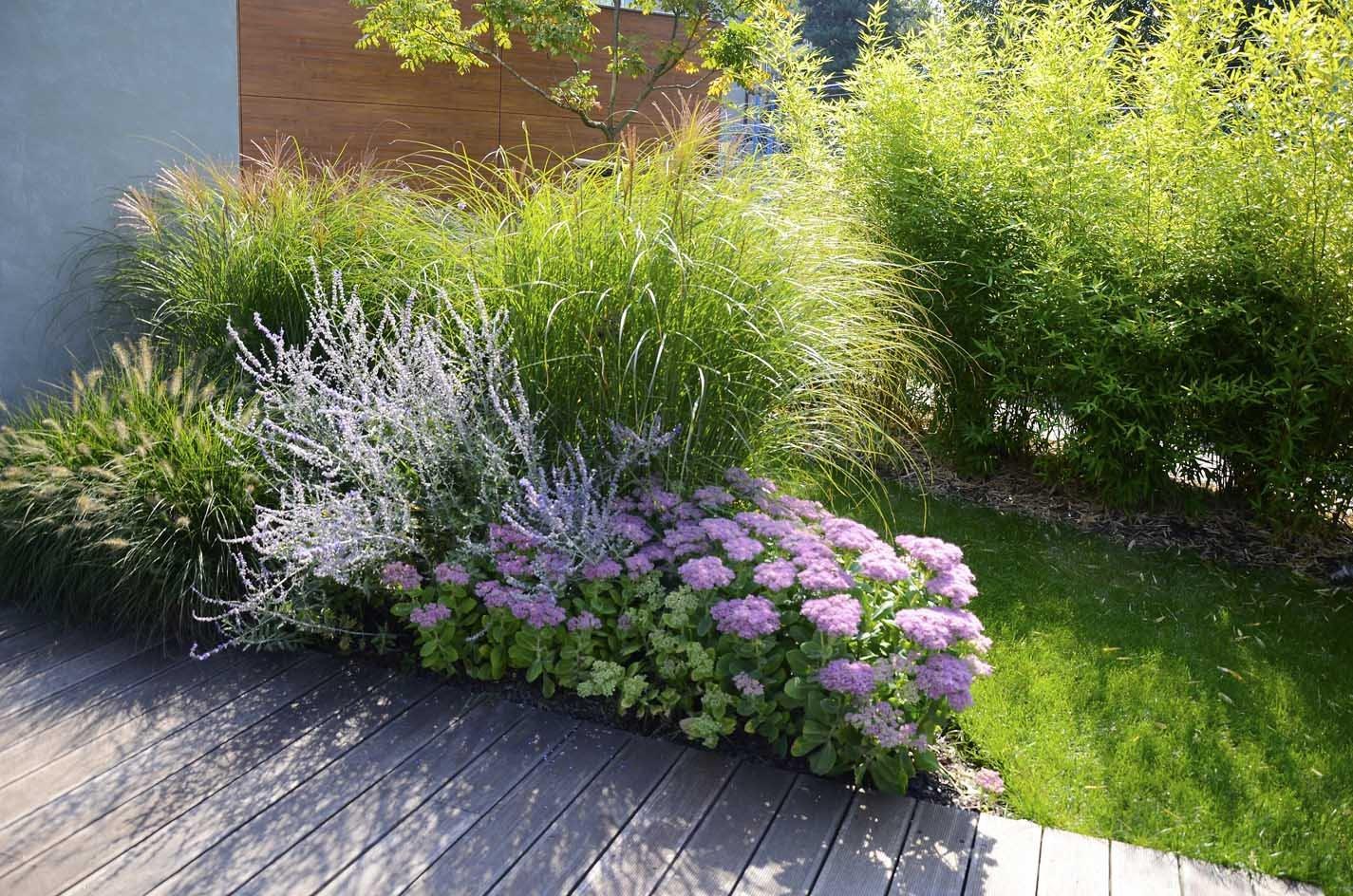 Zahrada - inspirace - Dochan, perovskie, rozchodníky, ozdobnice