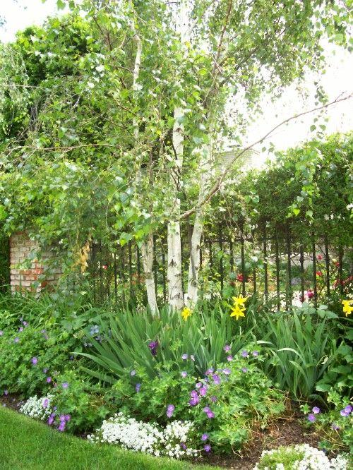 Zahrada - inspirace - Obrázek č. 75