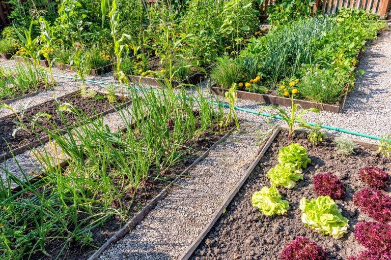Zahrada - inspirace - jo, takto by to taky šlo :-)