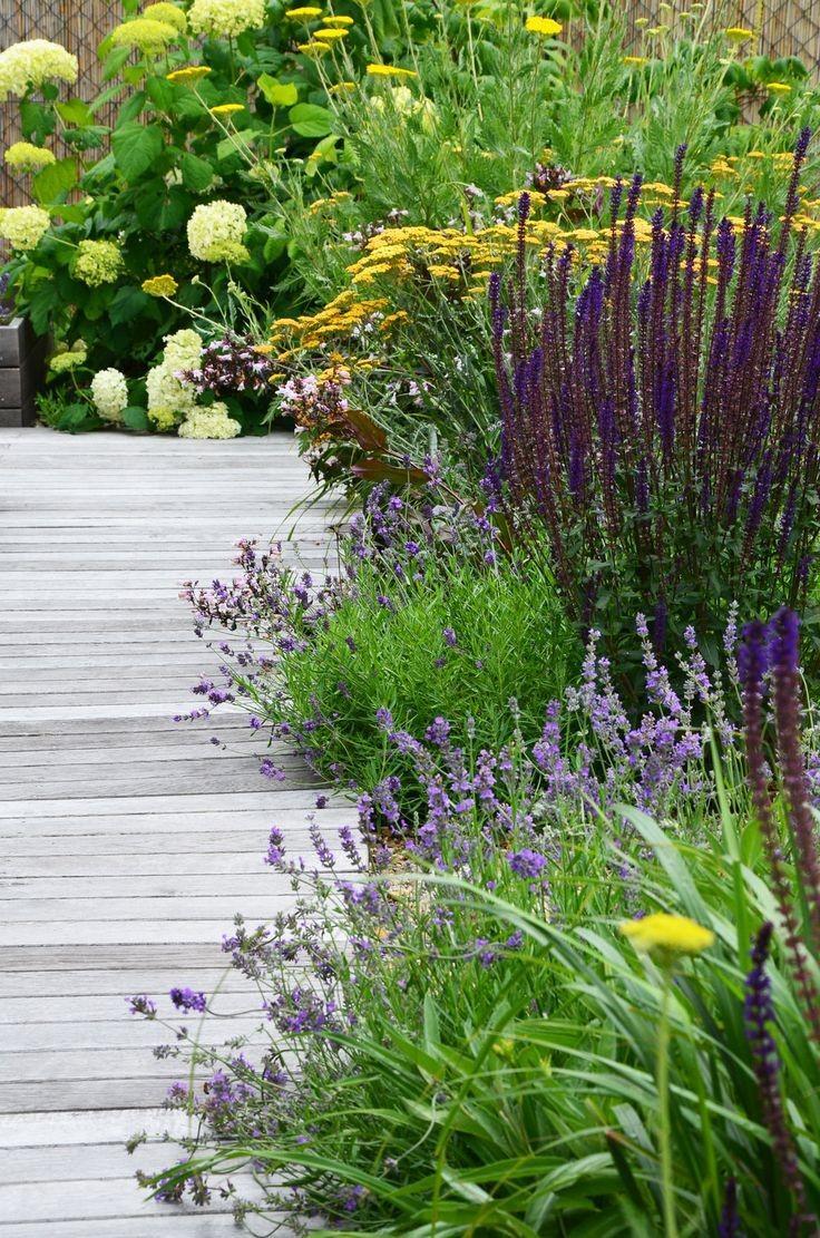 Zahrada - inspirace - Obrázek č. 317