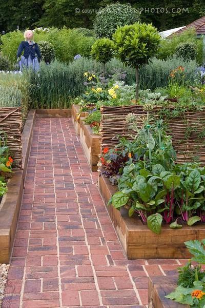 Zahrada - inspirace - suchou nohou v zeleninovém záhonu