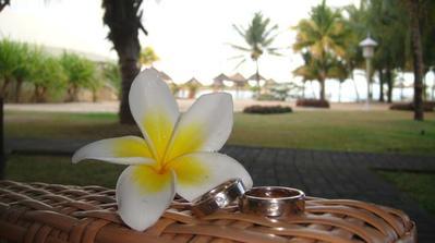 Svatební cesta - Mauricius 11/2010