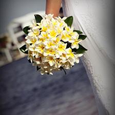 hawaiska kvetinka plumeria, dufam , ze ju zozeniem lacno :D