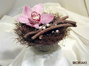 na prstynky jen se zelenou orchideii