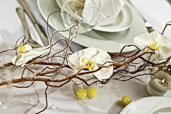 ...jen se zelenyma orchideema....