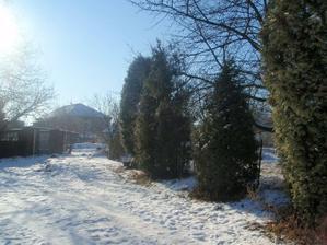 pozemek v zimě