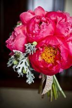 tato barva plus tulipány
