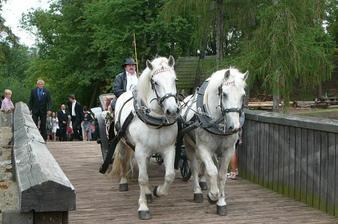 Koníci se jmenují Cvrček a Brouček - fakt :o)