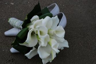 moje kvetina