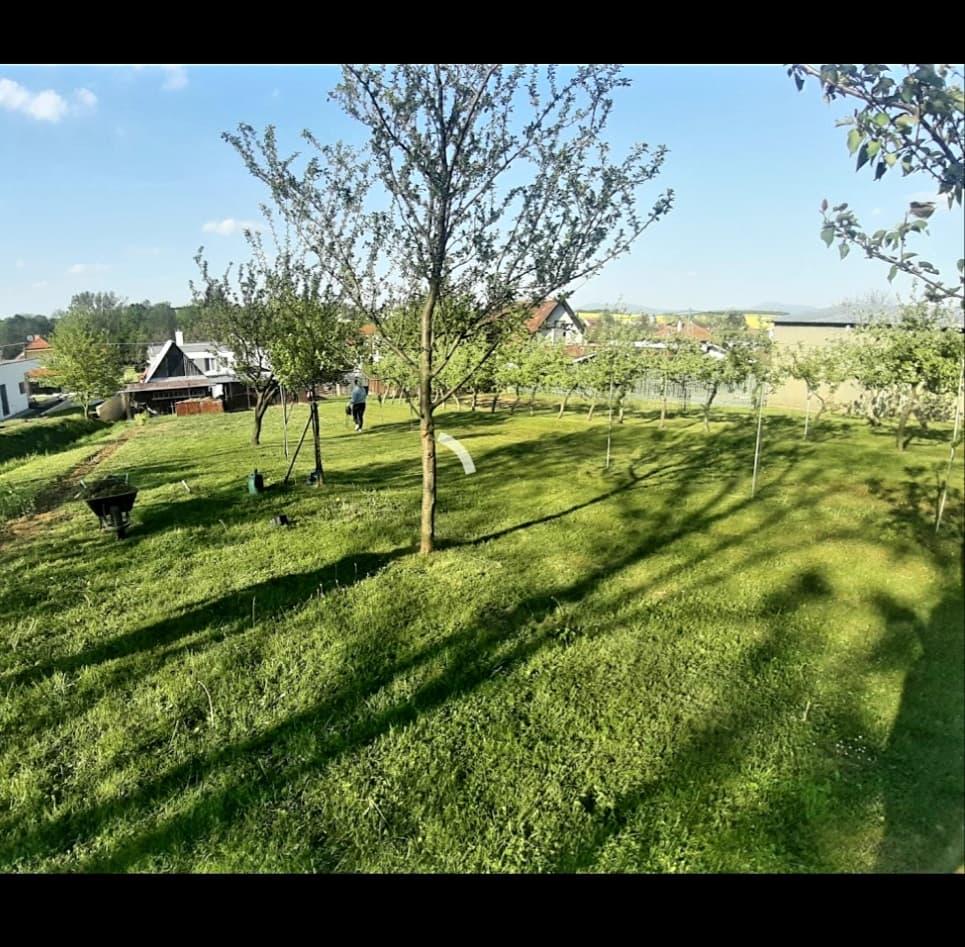 *čriepky od Nás* - naša záhrada jar 2020