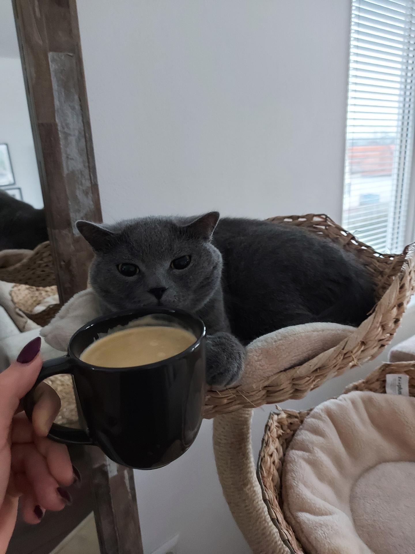 *čriepky od Nás* - coffee Lover Igor <3