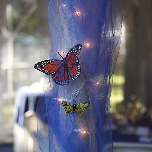Svadba inšpirovaná krásou motýľov - svadobná výzdoba