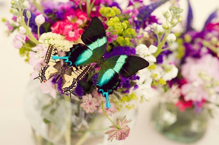 Svadba inšpirovaná krásou motýľov - kvetinová výzdoba