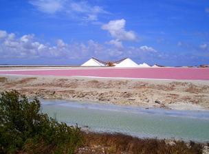 "Bonaire - nase ""predsvatebni"" cesta"
