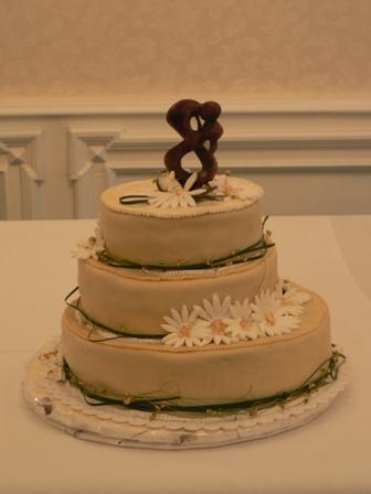 Dobroty - naša hlavná torta (made by sestra)