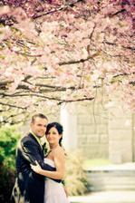 a zase kvetou sakury zítra přesně 2 roky a když jedu kolem vždycky si vzpomenu na krásný den :-)